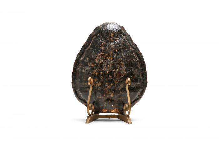 Tortoise Lamp on Gilt Mount - 1940's